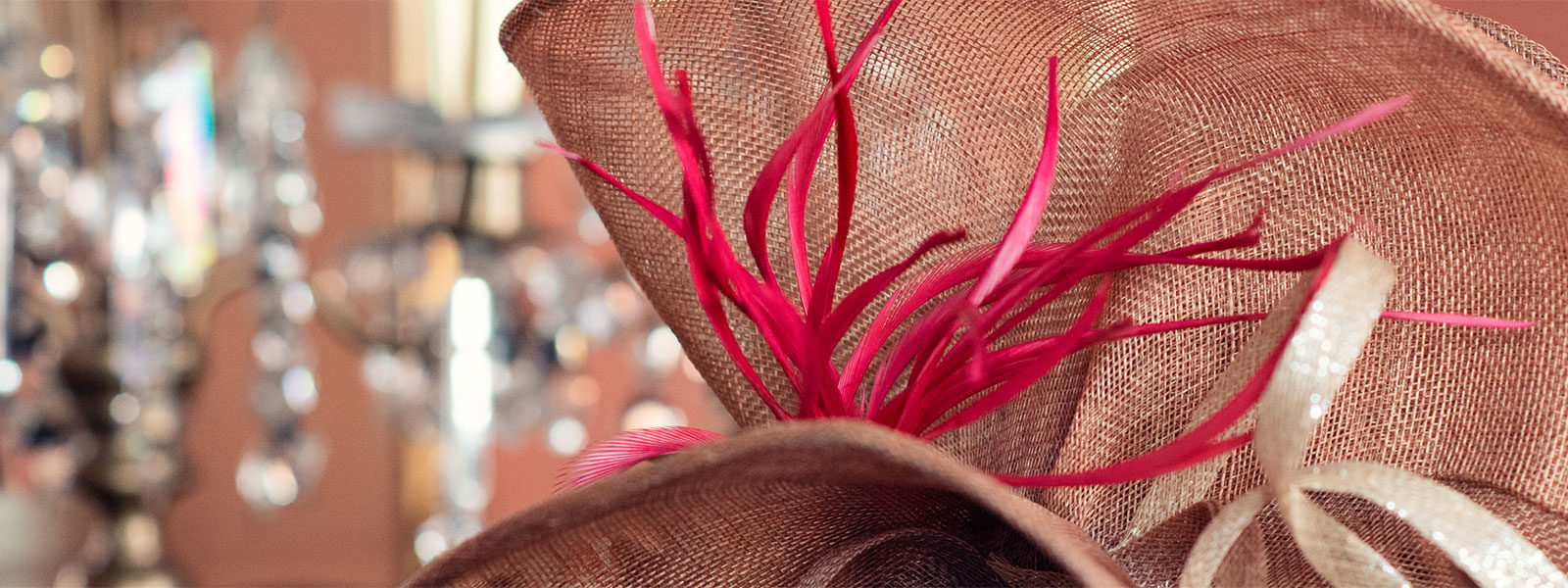 Close up of hat with feathers